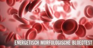 embargo-bloedtest